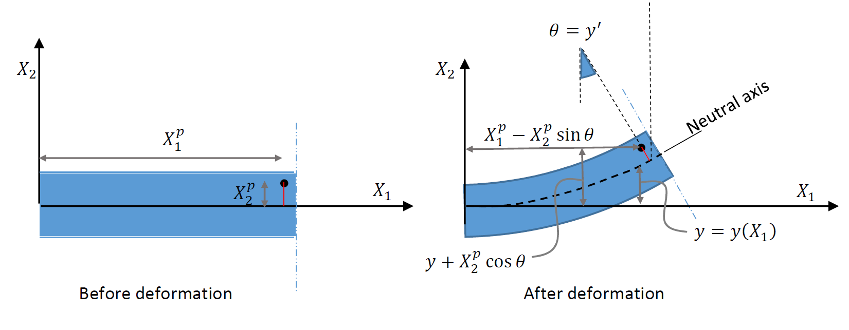 Figure 1.  Deformation assumption for beams. The black dot represents an arbitrary point before and after deformation. Plane sections perpendicular to the neutral axis remain plane and perpendicular to the neutral axis after deformation. The coordinates of the point after deformation can be obtained accordingly.