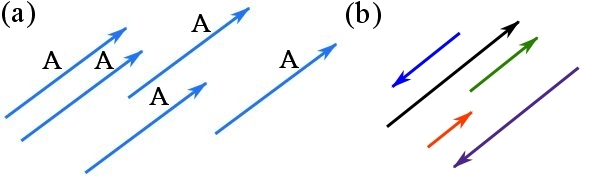 Fig. 2.3 (a) equal vectors, (b) parallel vectors